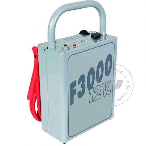 F 3000